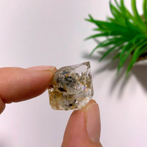 New York Herkimer Diamond with black Anthraxolite inclusions