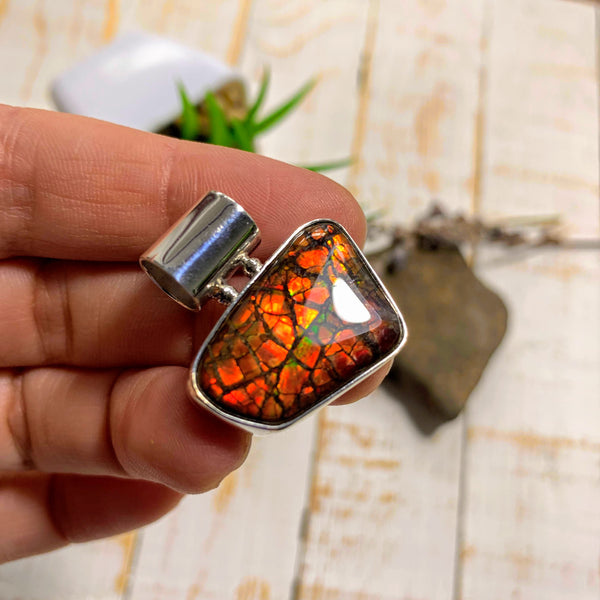 Flashy Ammolite Pendant in Sterling Silver (Includes Silver Chain) #1