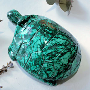 Fascinating Green Patterns Malachite Large Turtle Carving - Earth Family Crystals