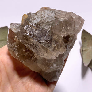 Incredible Golden Rutilated Elestial Smoky Quartz Large Cluster ~Locality  Brazil