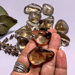 Set of 2 ~Optical Smoky Quartz Tumbled Stones~Locality Brazil