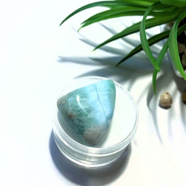 Pretty Polished Larimar Free Form in Collectors Box~Locality Dominican Republic #3 - Earth Family Crystals