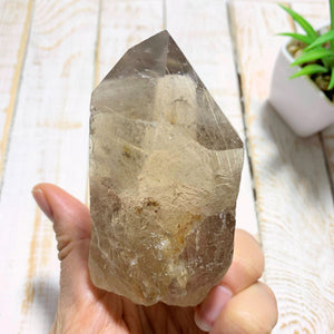 Completely Natural Rutilated Smoky Quartz Point Specimen~Locality Brazil