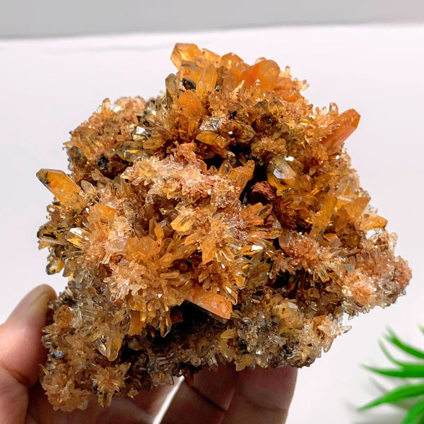 Incredible XL Rare Natural Creedite Collectors Specimen~Locality Mexico
