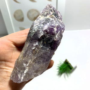 Auralite-23 Deep Purple Genuine Point From Ontario, Canada
