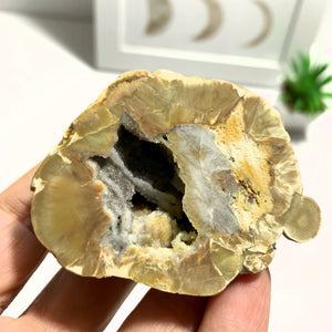 Australian Agate Druzy Geode Partially Polished Specimen