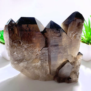 Incredible XL Dark Elestial Smoky Quartz Self Standing Specimen~Locality Brazil