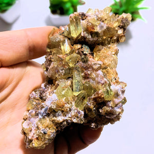 Incredible Power Packed Golden Apatite Loaded Cluster From Mexico