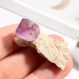 Rare Find! Natural Terminated Amethyst on Rock Matrix Dainty Specimen From Russia #2