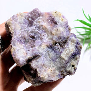 Rare Locality~Deep Purple Cubic Fluorite Natural Cluster from Rossport, Ontario-Canada