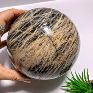3.3 KG Jumbo Supreme! Mysterious Shimmer Black Moonstone Sphere Carving~Locality Madagascar - Earth Family Crystals