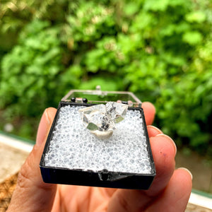 Brilliant Clarity New York Herkimer Diamond Quartz Specimen in Collectors Box #5