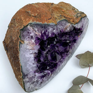 XXL Deep Purple Amethyst Geode Display Specimen From Uruguay
