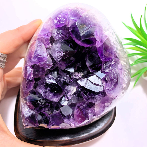 Dark Purple Amethyst Specimen on Removable Wood Display Stand From Uruguay