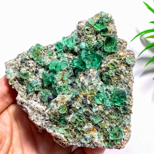 Rare Gemmy Green Cubic Fluorite From Famous Rogerley Mine, England - Earth Family Crystals