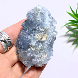 Celestite Sweet Blue Specimen From Madagascar
