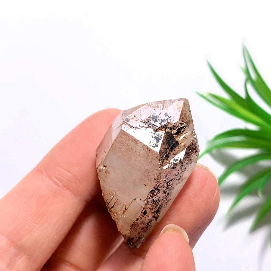 Double Terminated Elestial Orange River Quartz Point From South Africa #3