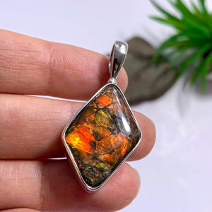 Lovely Genuine Alberta Ammolite Pendant in Sterling Silver (Includes Silver Chain) - Earth Family Crystals