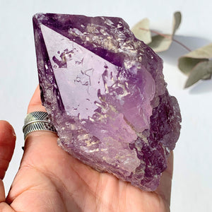 NEW FIND~Brilliant Natural Hydrothermal Etched XL Amethyst Specimen From Brazil #1 - Earth Family Crystals