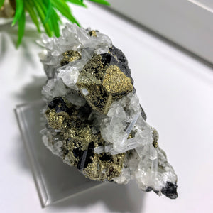 Collectors Specimen~ Sphalerite with Pyrite, Calcite & Anhydrite from Naica, Mexico on Display Stand