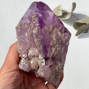 NEW FIND~Brilliant Natural Hydrothermal Etched XL Amethyst Specimen From Brazil #2