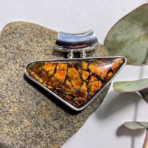 Gorgeous Flashy Genuine Alberta Ammolite Pendant in Sterling Silver (Includes Silver Chain) #1 - Earth Family Crystals