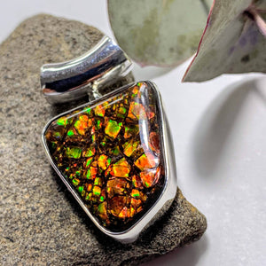 Gorgeous Flashy Genuine Alberta Ammolite Pendant in Sterling Silver (Includes Silver Chain) #3