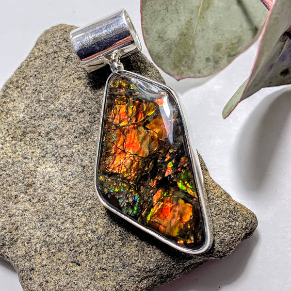 Gorgeous Flashy Genuine Alberta Ammolite Pendant in Sterling Silver (Includes Silver Chain) #4 - Earth Family Crystals