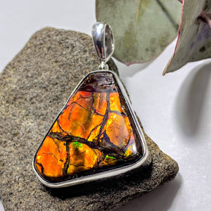 Gorgeous Flashy Genuine Alberta Ammolite Pendant in Sterling Silver (Includes Silver Chain) #5 - Earth Family Crystals