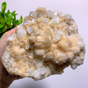 Incredible Stilbite & Clear Apophyllite XL Cluster With Frosted Apophyllite Druzy Dusting~Locality India