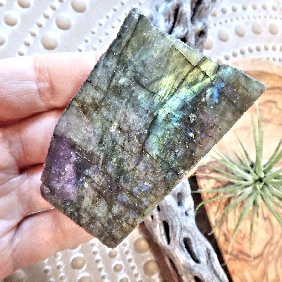 Lifted Spirit Partially Polished Labradorite Standing Specimen