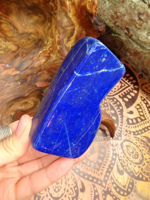 Cute Deep Blue Lapis Lazuli Standing Specimen - Earth Family Crystals