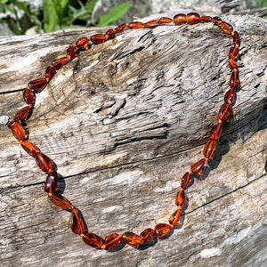 Polished Cognac Lithuanian Baltic Amber 18 Inch Necklace - Earth Family Crystals