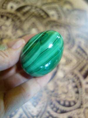 Shiny Flower Patterns & Swirls Malachite Egg Carving - Earth Family Crystals