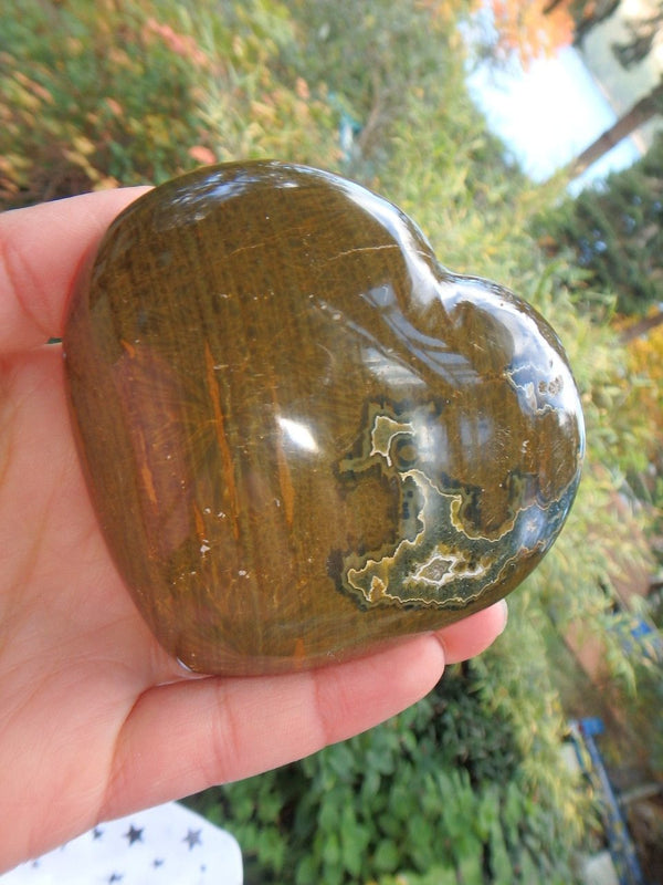 Brown & Green Contrast Ocean Jasper Love Heart - Earth Family Crystals