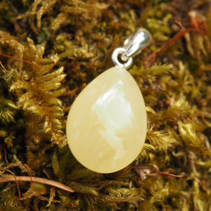 Lithuanian Baltic Amber Dainty Butterscotch Pendant in Sterling Silver ( Includes Silver Chain) #1