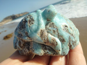 Really Special & Stunning LARIMAR GEMSTONE TURTLE CARVING - Earth Family Crystals