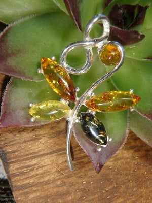 Beautiful BALTIC AMBER DRAGONFLY PENDANT In Sterling Silver (Includes Silver Chain) - Earth Family Crystals
