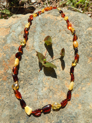 Vibrant Multi Color Lithuanian Baltic Amber Adult Necklace