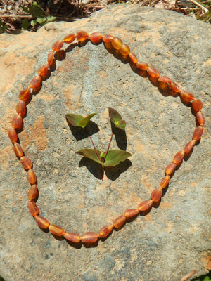 Unpolished Cognac Lithuanian Baltic Amber Adult Necklace