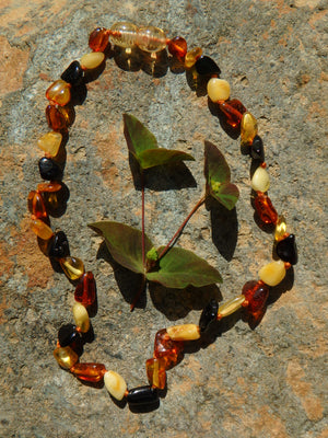 Multi Colored Baby/Child Lithuanian Baltic Amber Necklace
