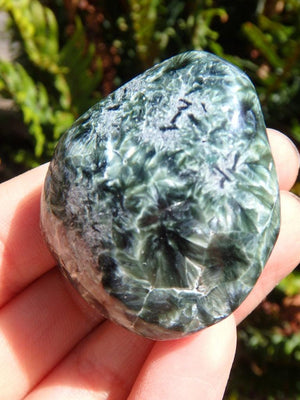 Silver Angel Wings & Forest Green Seraphinite Palm Stone - Earth Family Crystals