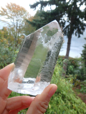 Gorgeous  Phantom Inclusions Large Lemurian Seed Point From Brazil - Earth Family Crystals