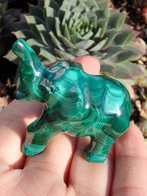 Adorable Malachite Elephant Carving - Earth Family Crystals