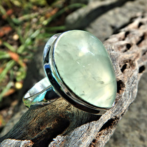Minty Green Optical Prehnite Ring in Sterling Silver (Size 8)