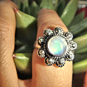 Royal Blue Flower Rainbow Moonstone Ring in Sterling Silver (Size 9)