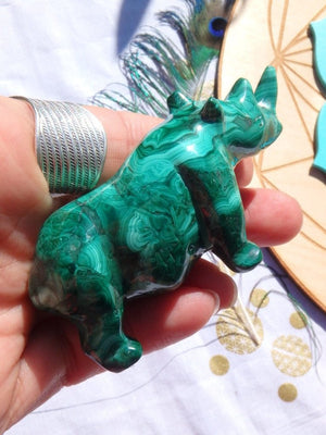 Amazing Green Swirls Malachite  Rhinoceros Carving - Earth Family Crystals