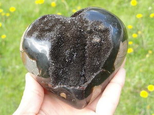SEPTARIAN DRAGON HEART~ Stone of Grounding & Shielding of the physical, mental, & emotional bodies - Earth Family Crystals