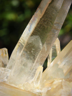 Incredible Phantom Included Points Samadhi Himalayan Quartz Specimen From India