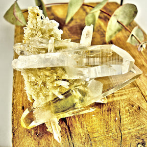 AA Grade Fabulous Phantom Included Green Samadhi Quartz DT Elestial Cluster From The Himalayas